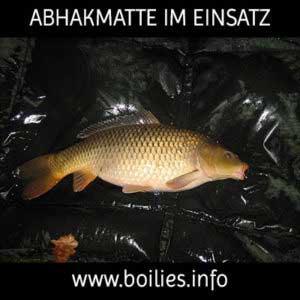 Abhakmatte Übersicht